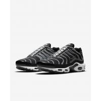 Кроссовки Nike Air Max Plus черные с серым