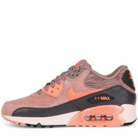 Кроссовки Nike Air Max 90 Leather Bronze